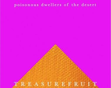 Arizona Music Treasurefruit Album Art