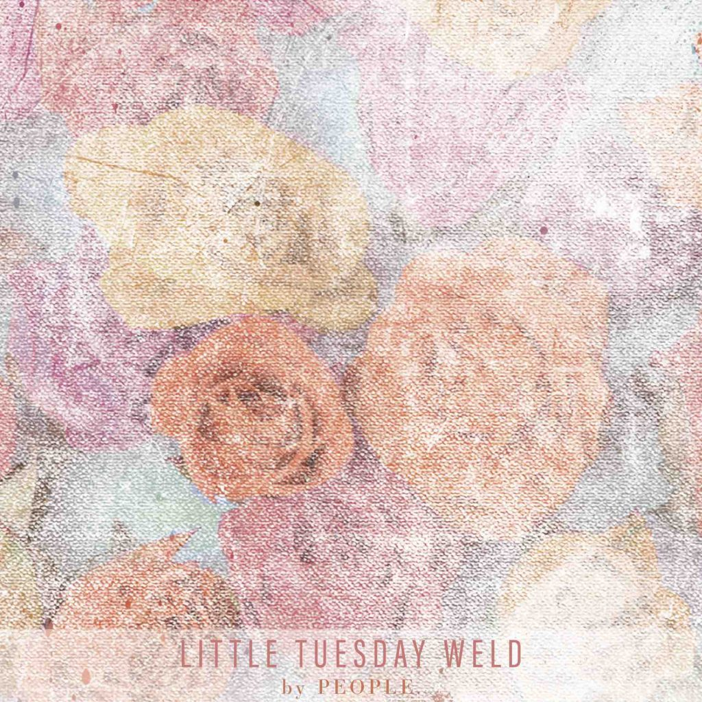 little-tuesday-weld-final