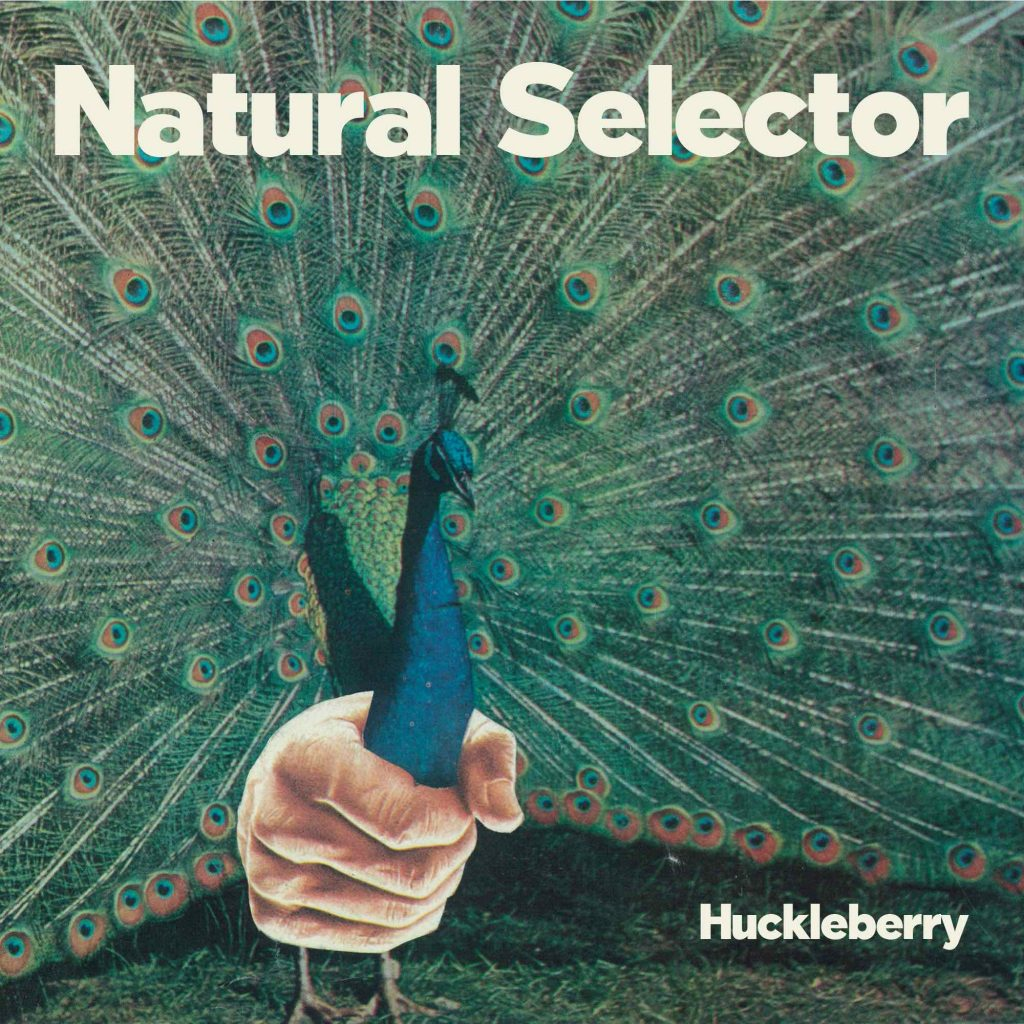 Huckleberry - Natural Selector - cover