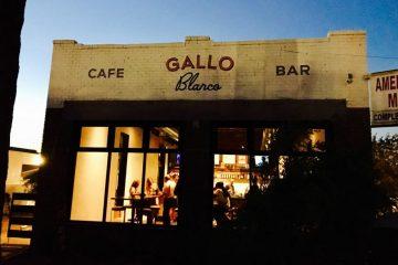 Gallo1